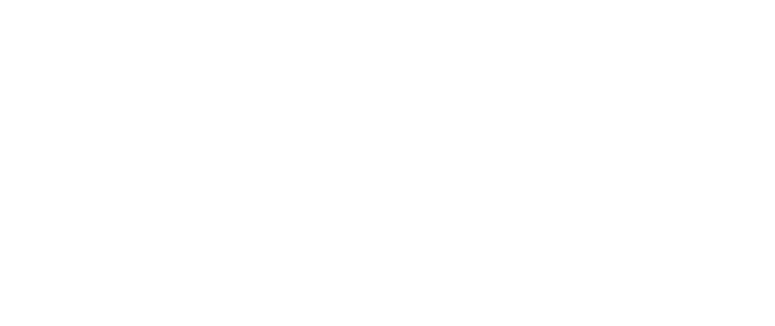 Dog styling by Dani